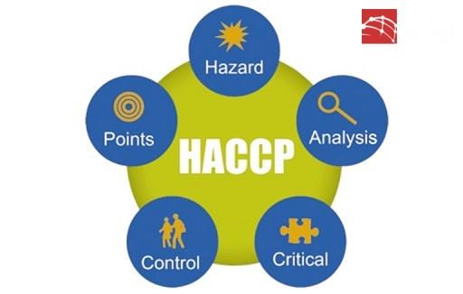 Kế hoạch HACCP