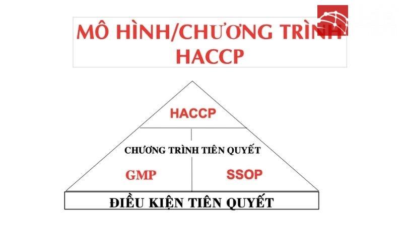 Xây dựng chương trình HACCP
