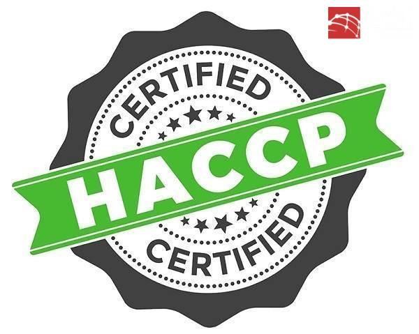 Xây dựng hệ thống HACCP cho sản phẩm