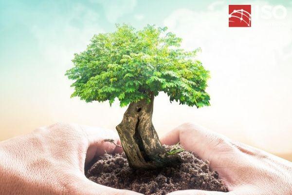 rui ro va co hoi trong ISO 14001 - Yêu cầu rủi ro và cơ hội trong ISO 14001